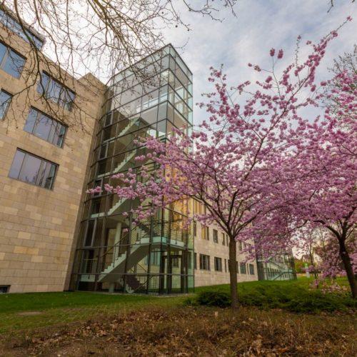 Avacongebäude Helmstedt