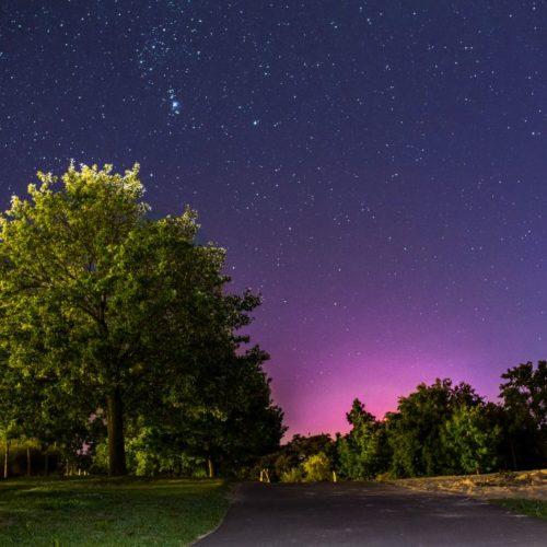 Sternenhimmel im Allerpark