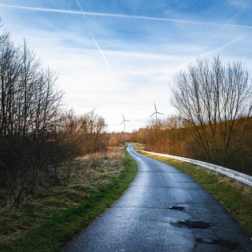Weg zum Lappwaldsee