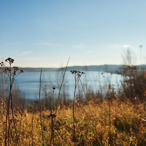 Am Lappwaldsee