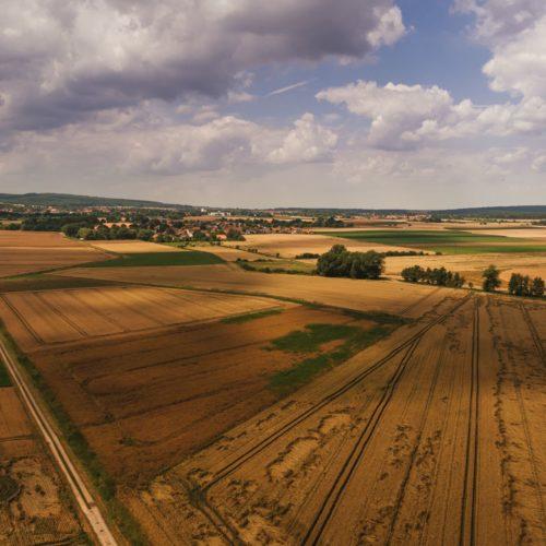 Abgeerntete Getreidefelder